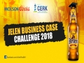 Jelen Business Case Challenge 2018
